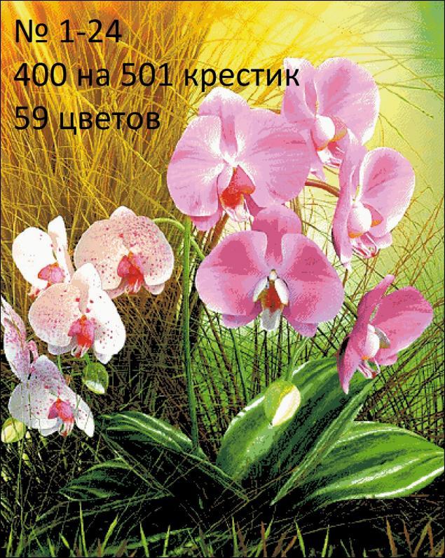 Авторская схема для вышивания 1-24.  BIVdesign Бедокурова Ирина.  Вышивка.