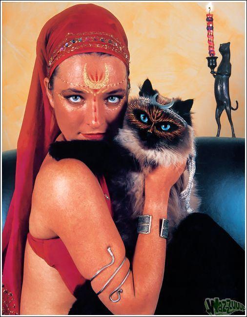 Зачем красить кошек?, фото № 20