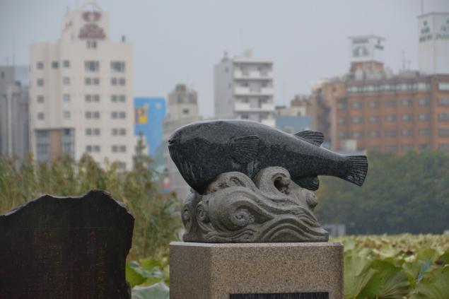Дикий забег по Токио за 7 дней. День пятый. Зоопарк Уэно и детские магазины., фото № 62