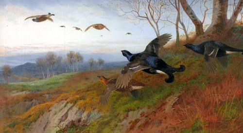 Работы художника Работы художника Archibald Thorburn. Часть 5. (30 фото)