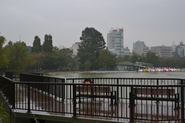 Дикий забег по Токио за 7 дней. День пятый. Зоопарк Уэно и детские магазины., фото № 51