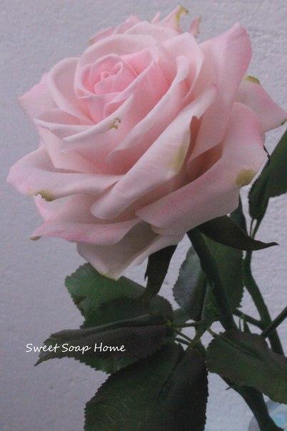 Новинка нашей студии - керамическая флористика! Цветы из холодного фарфора - как живые!, фото № 1