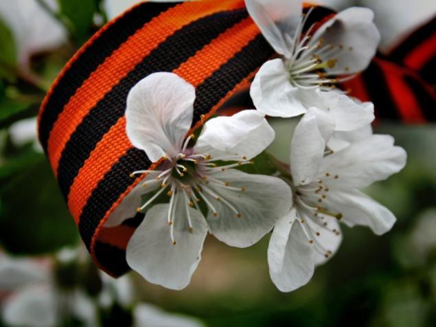 май, проволока, wire, wrap, цветы, природа, весна, ювелир, мастер