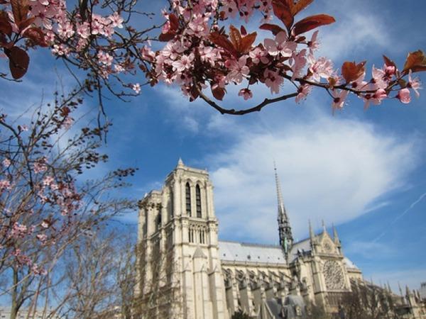 Весенний Париж, дыхание теплого ветра, фото № 29