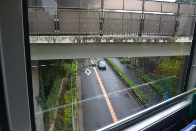 Дикий забег по Токио за 7 дней. День пятый. Зоопарк Уэно и детские магазины., фото № 28