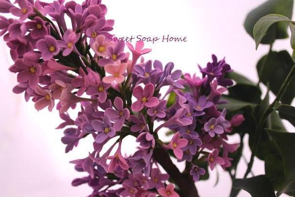 Новинка нашей студии - керамическая флористика! Цветы из холодного фарфора - как живые!, фото № 3