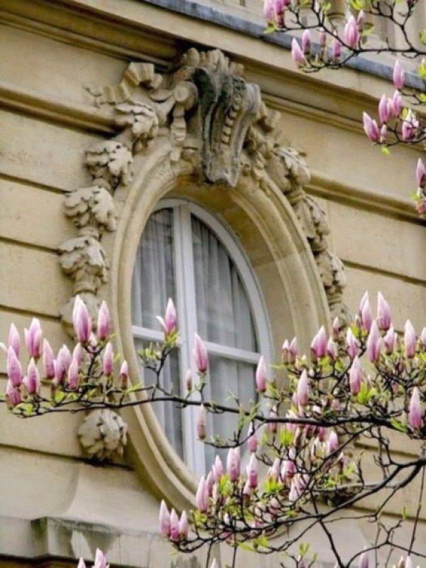 Весенний Париж, дыхание теплого ветра, фото № 11
