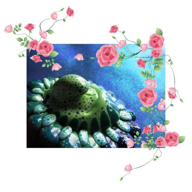 акция, брошь цветок, чудеса