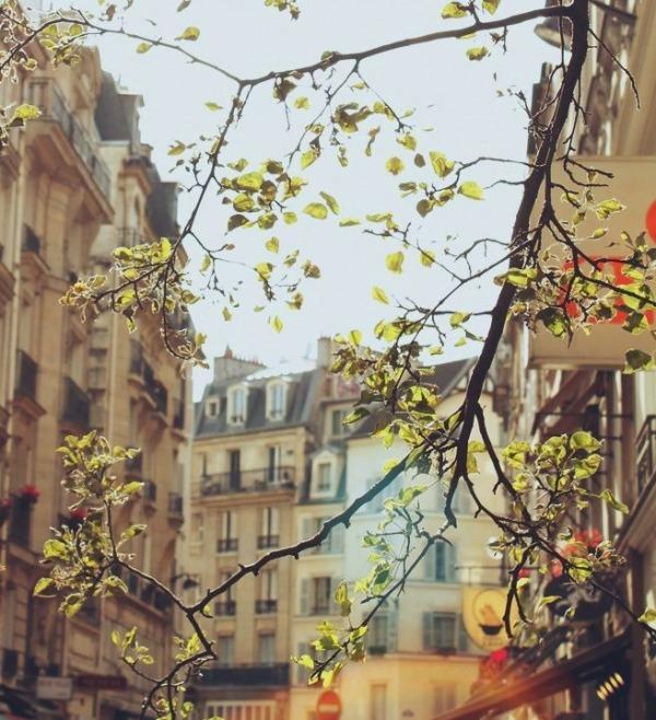 Весенний Париж, дыхание теплого ветра, фото № 18