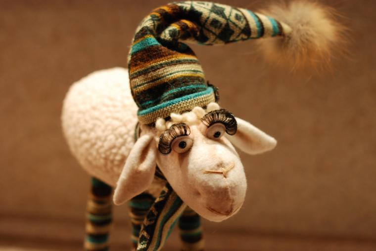 симпатяга, овца