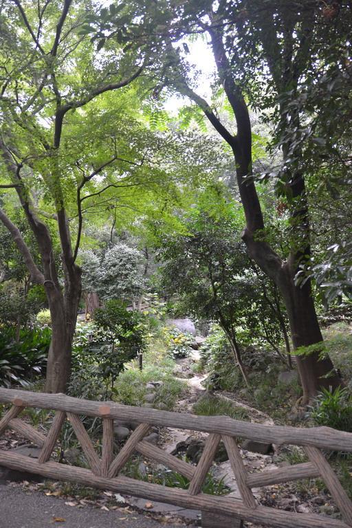 Дикий забег по Токио за 7 дней. День пятый. Зоопарк Уэно и детские магазины., фото № 22