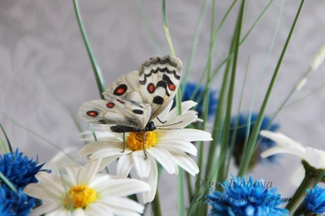 ромашки, цветы ручной работы, подарок женщине, белый