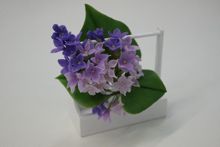 школа лепки цветов, холодный фарфор