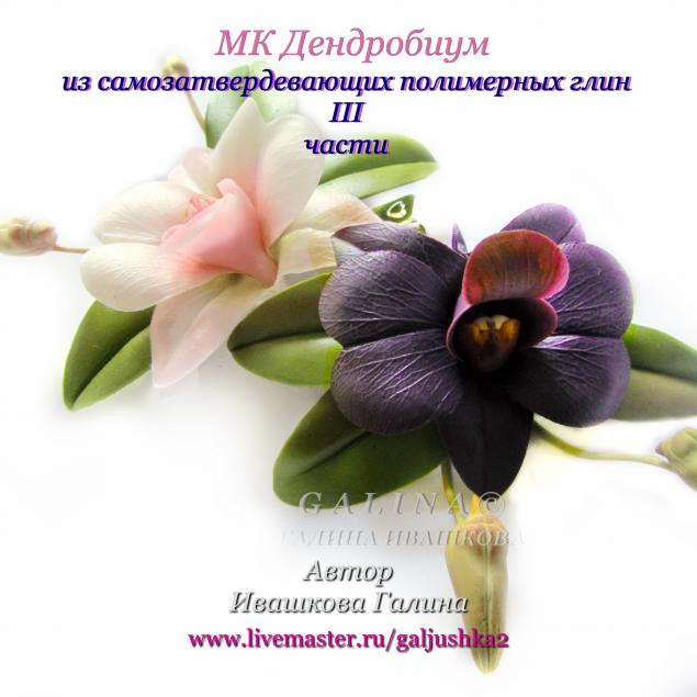 новости, лепка орхидеи, видео мк