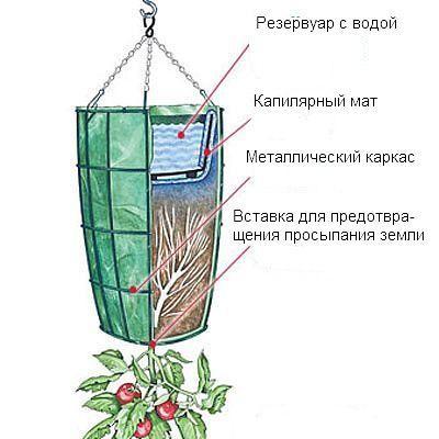Приспособление для выращивания культур плантация своими руками