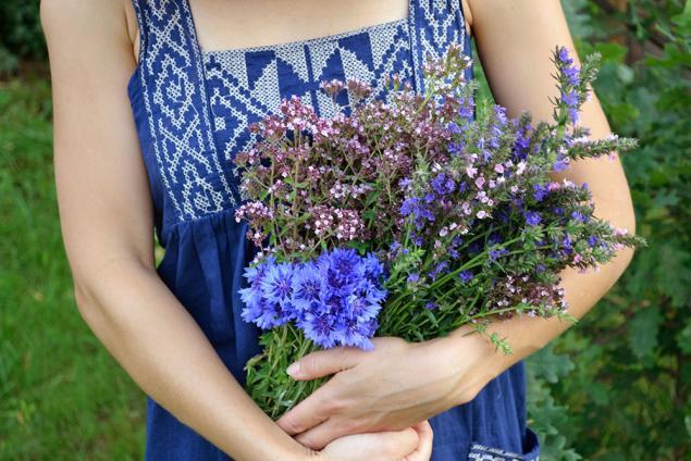 лето, зелёное время, летнее, летние новости, жаркая пора, дачное, травы, сушка трав, сбор трав, васильки, шалфей, душица