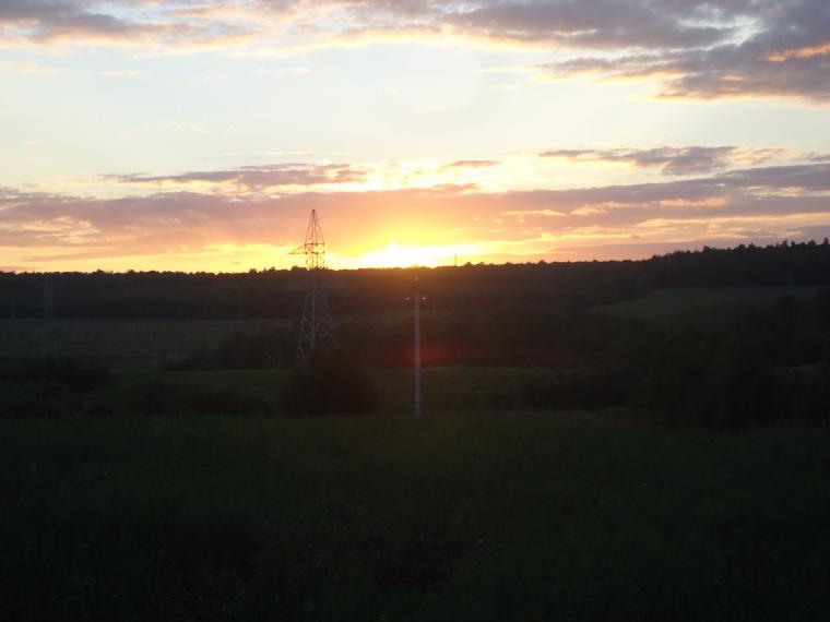 регина журавлева