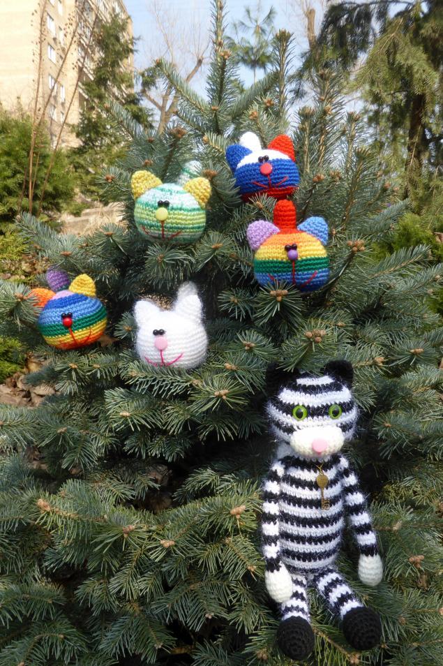кот, котик, мартовские коты, полосатый кот, антистрессовые коты, тигр
