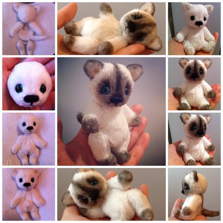 сиамский кот, котенок, тедди, котик, бирюзовый, бежевый, коричневый, хвост, малыш, кот