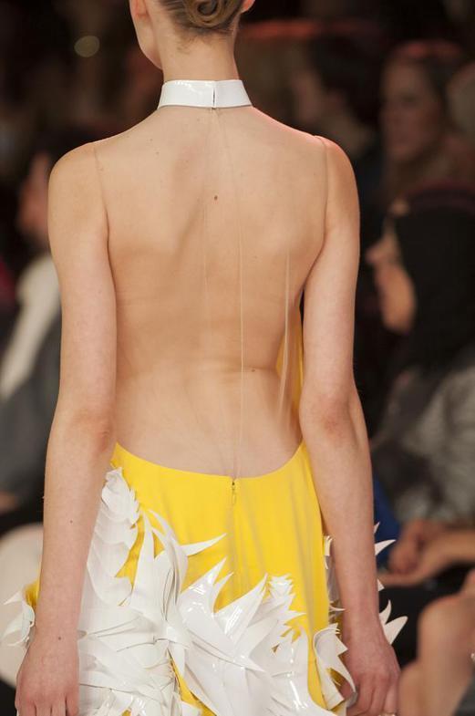 Stephane Rolland Haute Couture весна-лето 2014, фото № 113