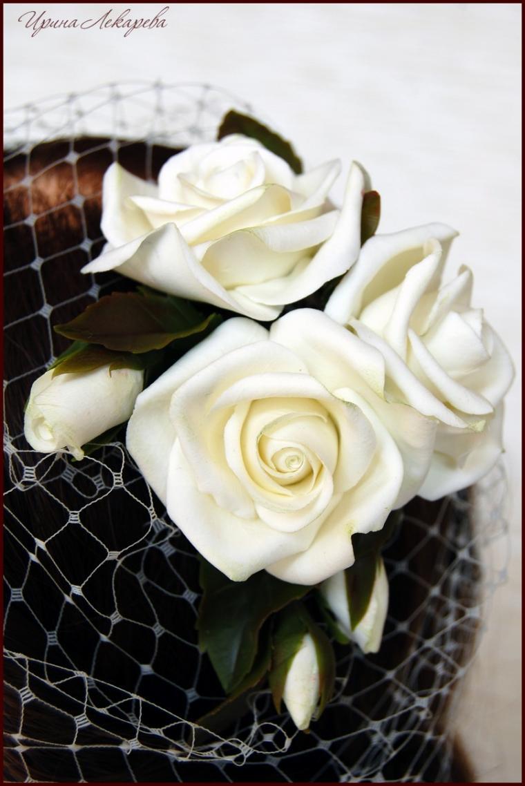 розы цвета айвори