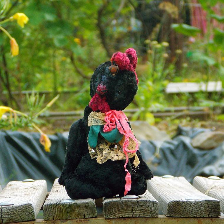 петух, символ года 2017, птица