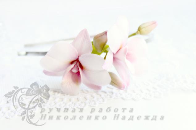 орхидея, новость магазина