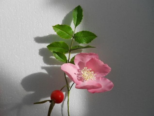 полимерная глина, цветы из полимерной глины