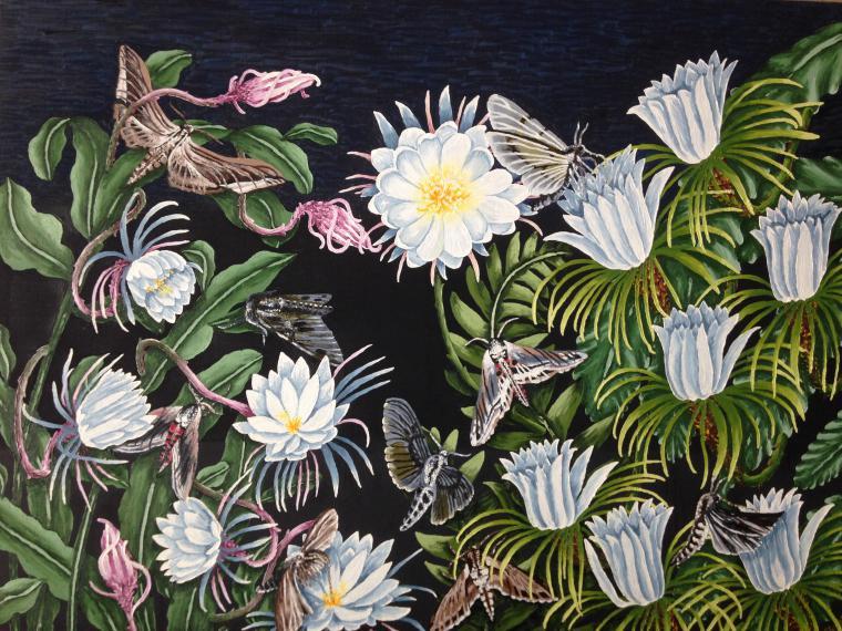 бабочки, ночной цветок, египет, картина в подарок, бабочка