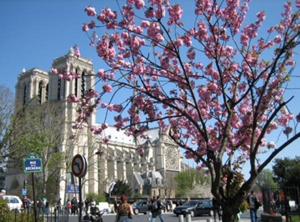 Весенний Париж, дыхание теплого ветра, фото № 30