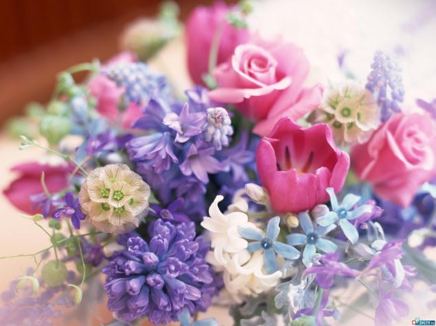 8 марта, праздник, весна, цветы