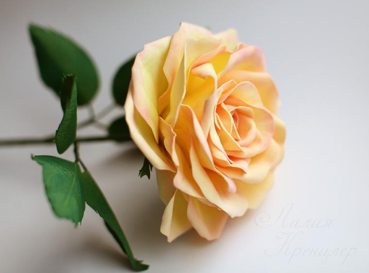 роза, фоамиран, роза из фоамирана, мастер-класс, живой мастер-класс, мастер-класс в москве