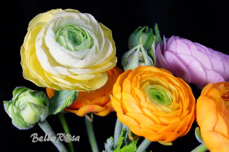 керамическая флористика, цветы из глины