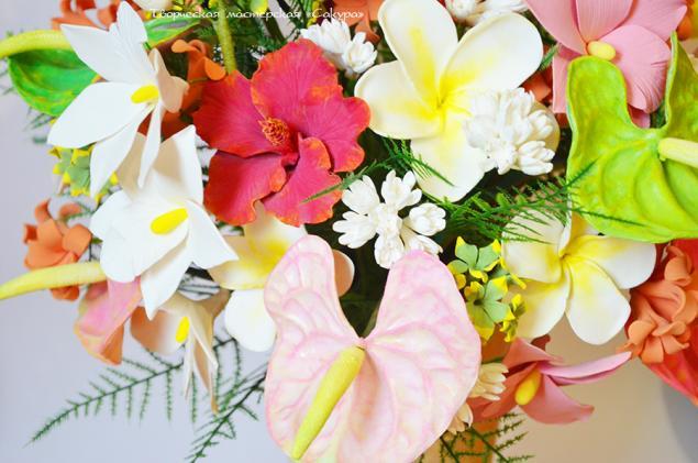 цветы, тропики