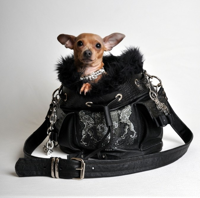 Nocturne Handbag  Genuine leather and faux fur  <a href=