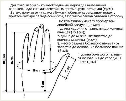 Замеры для вязания варежек