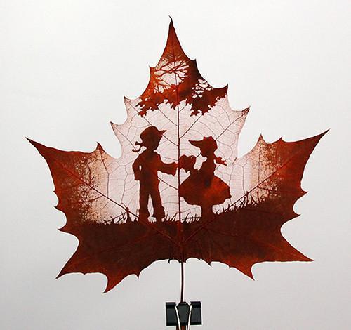 рисунки листьев:
