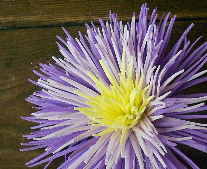 акция, цветы из фоамирана