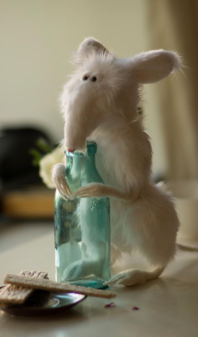 крысятина