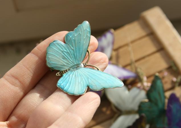 у кого зима-мороз...а у меня бабочки