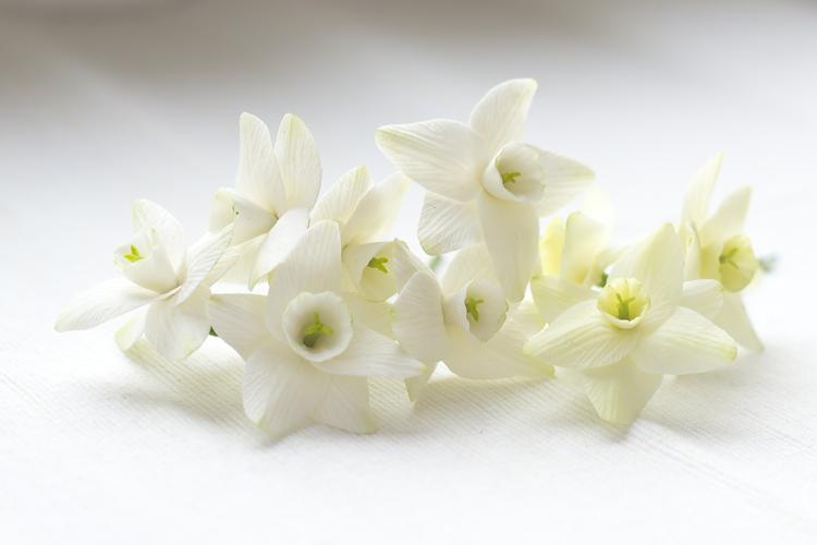 цветы ручной работы, нарцисс