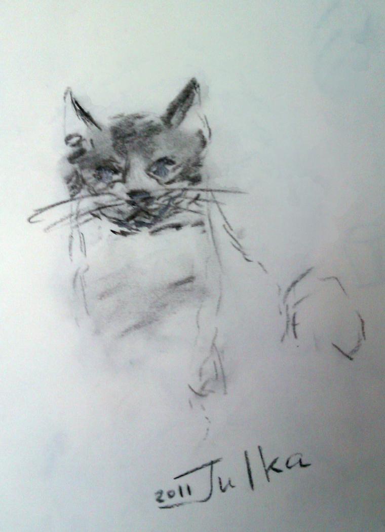 кошка, кошки, уголь, графика