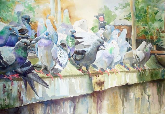 голуби акварелью, акварель по-сырому