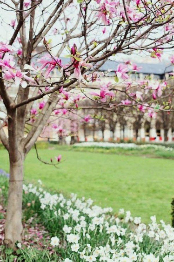 Весенний Париж, дыхание теплого ветра, фото № 15