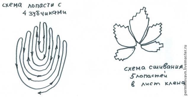 Лист винограда и лист клена