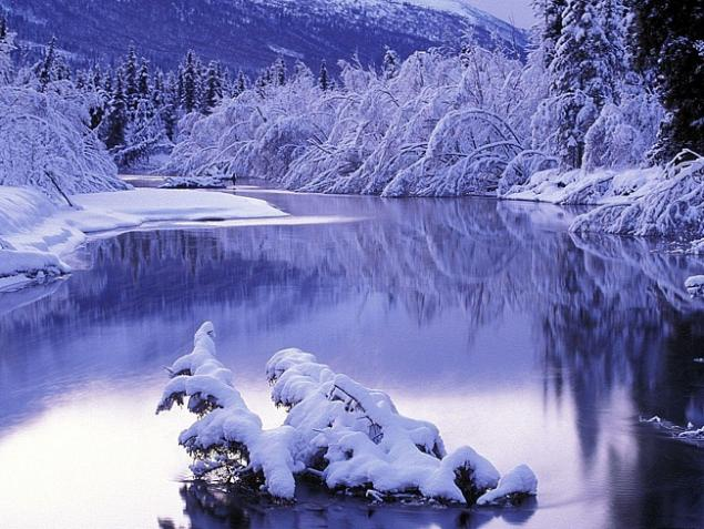 Морозной зимой, фото № 1