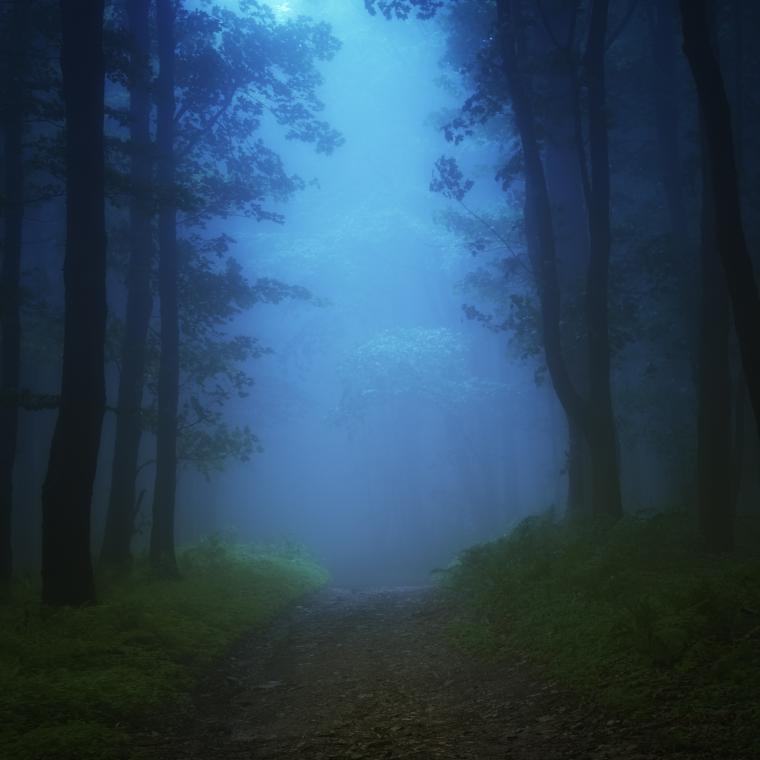 цветной туман