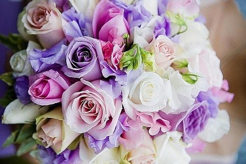 Нежные цветы для девушки