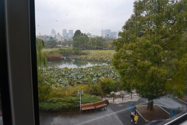 Дикий забег по Токио за 7 дней. День пятый. Зоопарк Уэно и детские магазины., фото № 30