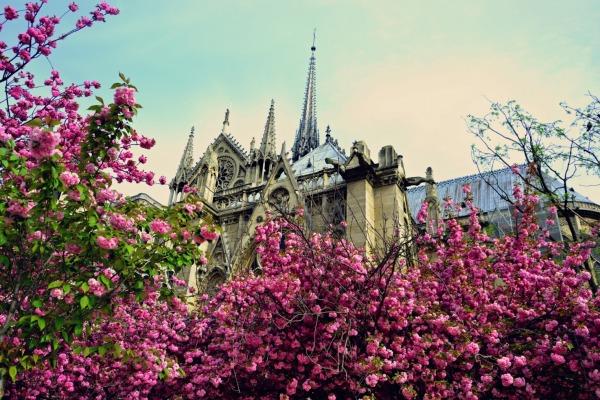 Весенний Париж, дыхание теплого ветра, фото № 3